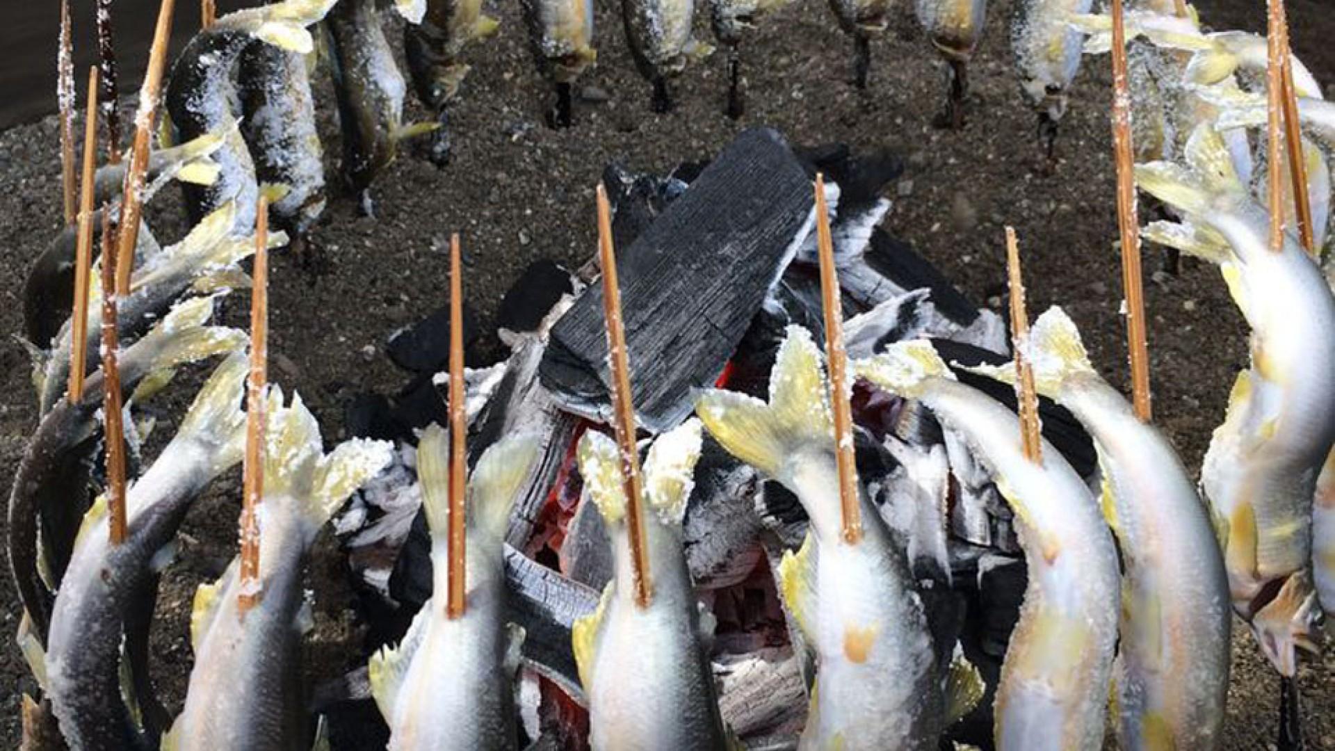 Ẩm thực Ayu (sweetfish)