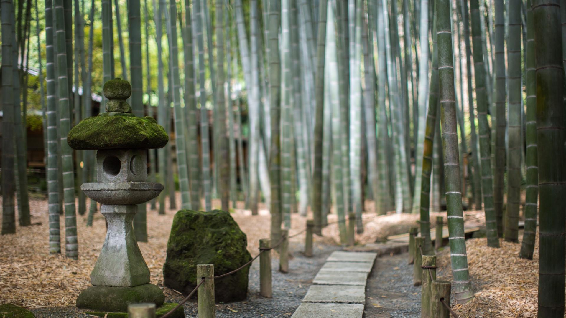 Hōkoku-ji Tempel