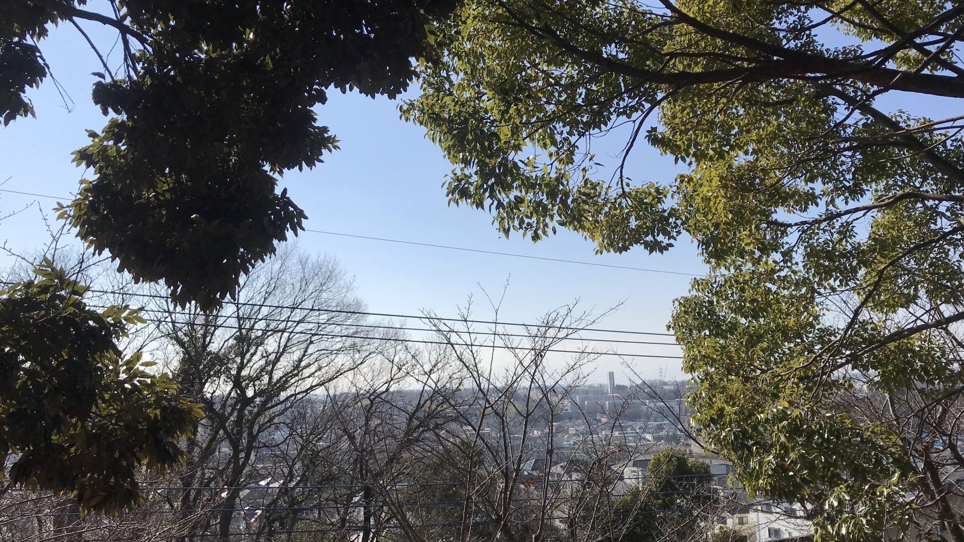 คะนะโฮะโดะ มะเนียวอุเอ็น (เส้นทางเดินในพื้นที่ตอนเหนือของอะสะโอะ-คุ ซึ่งมีวิวภูเขาฟูจิ)