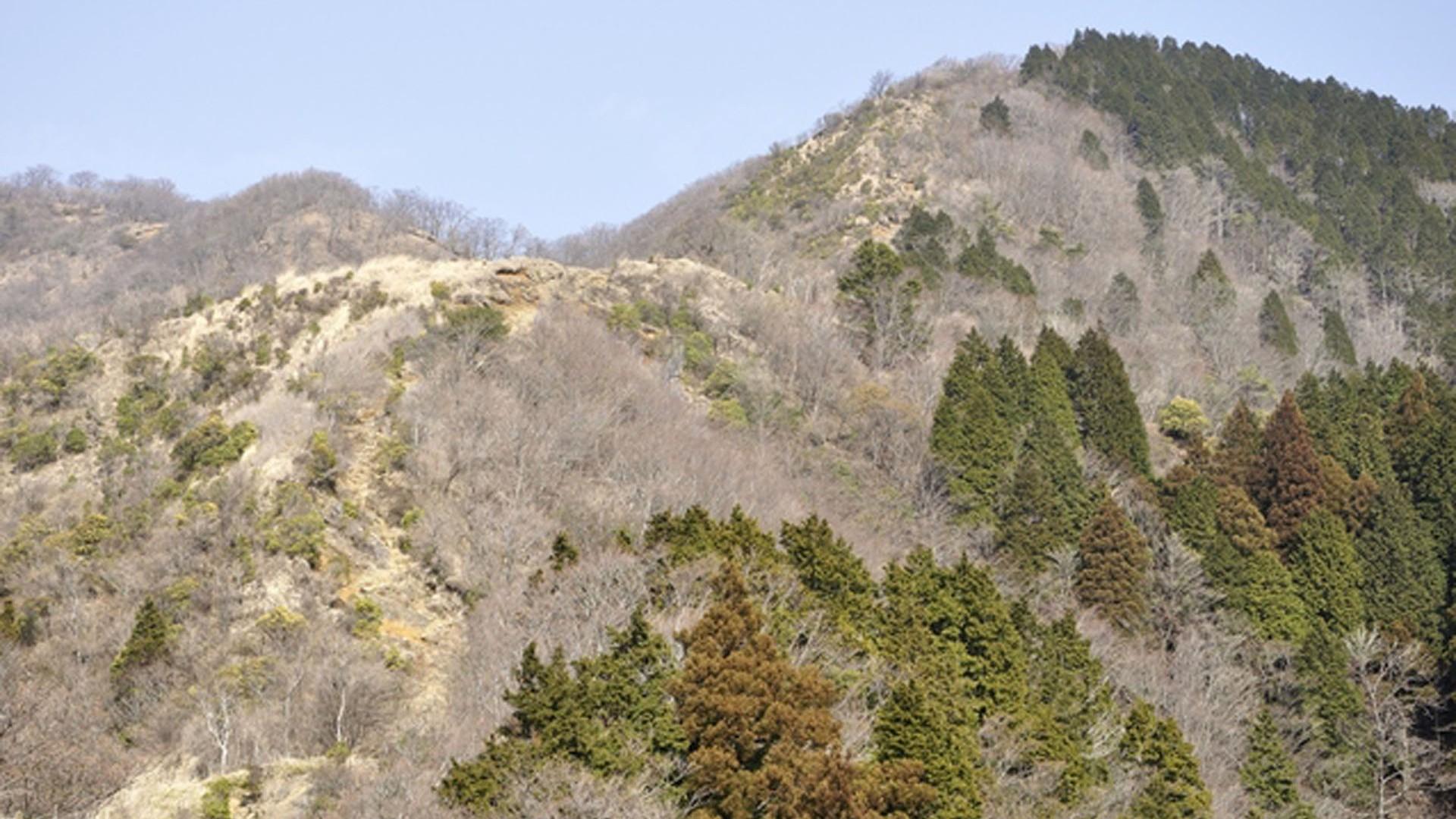 Berg Shindainichi
