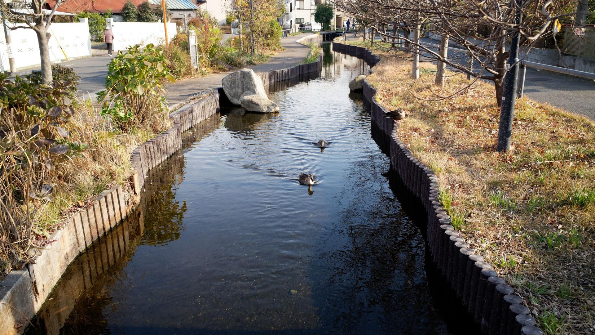 La promenade Egawa Seseragi