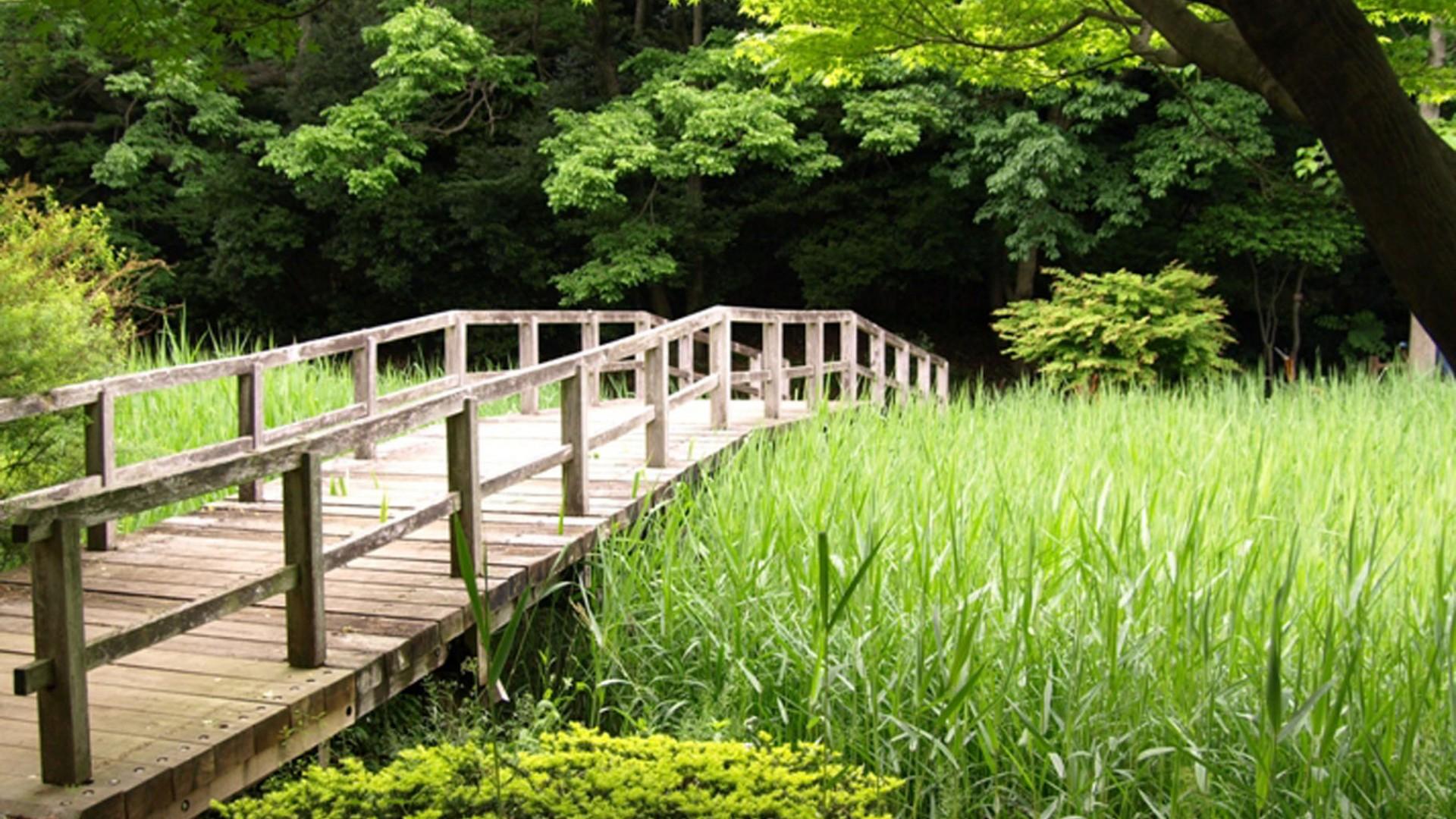Le parc Dohogawa