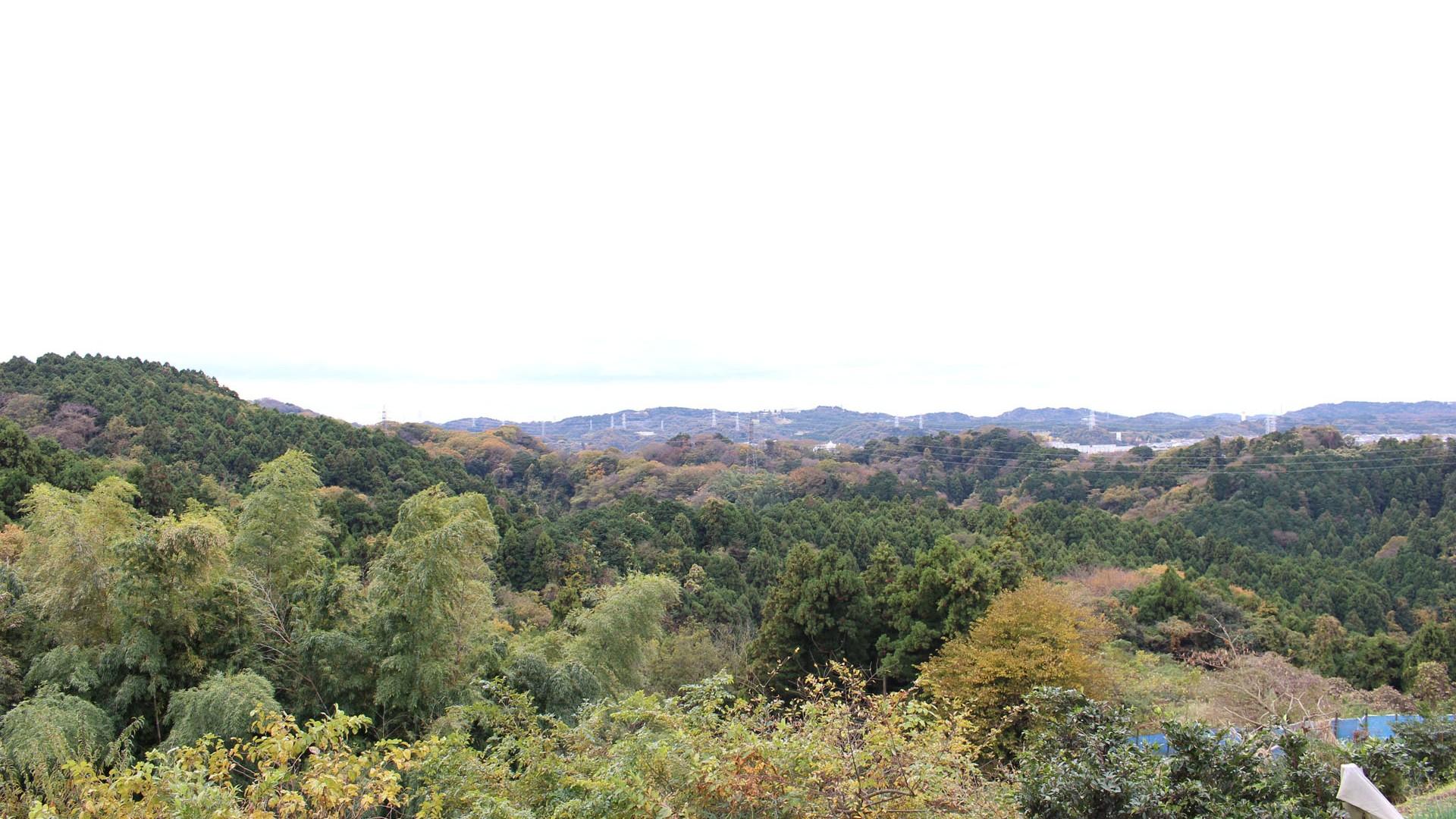 披頭四山徑(起點為金澤區「登山路線」)