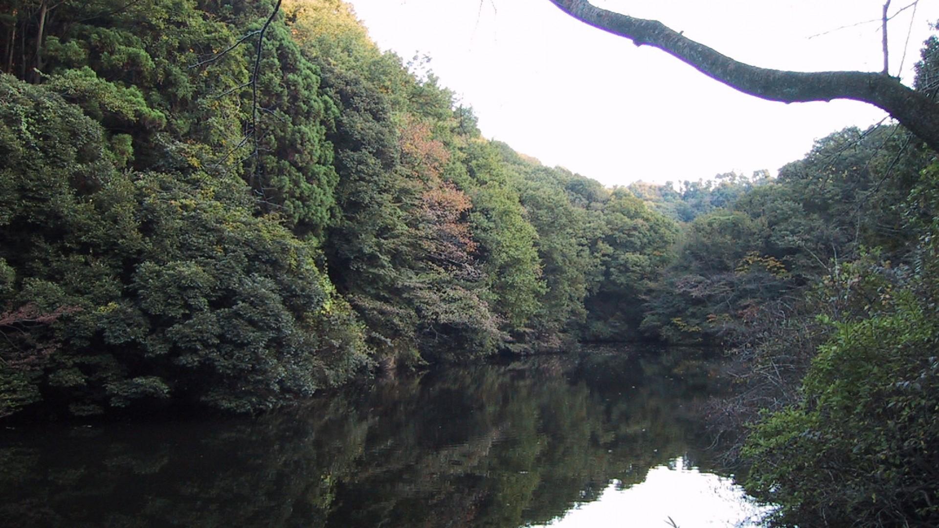 Công viên rừng Sanzagaike