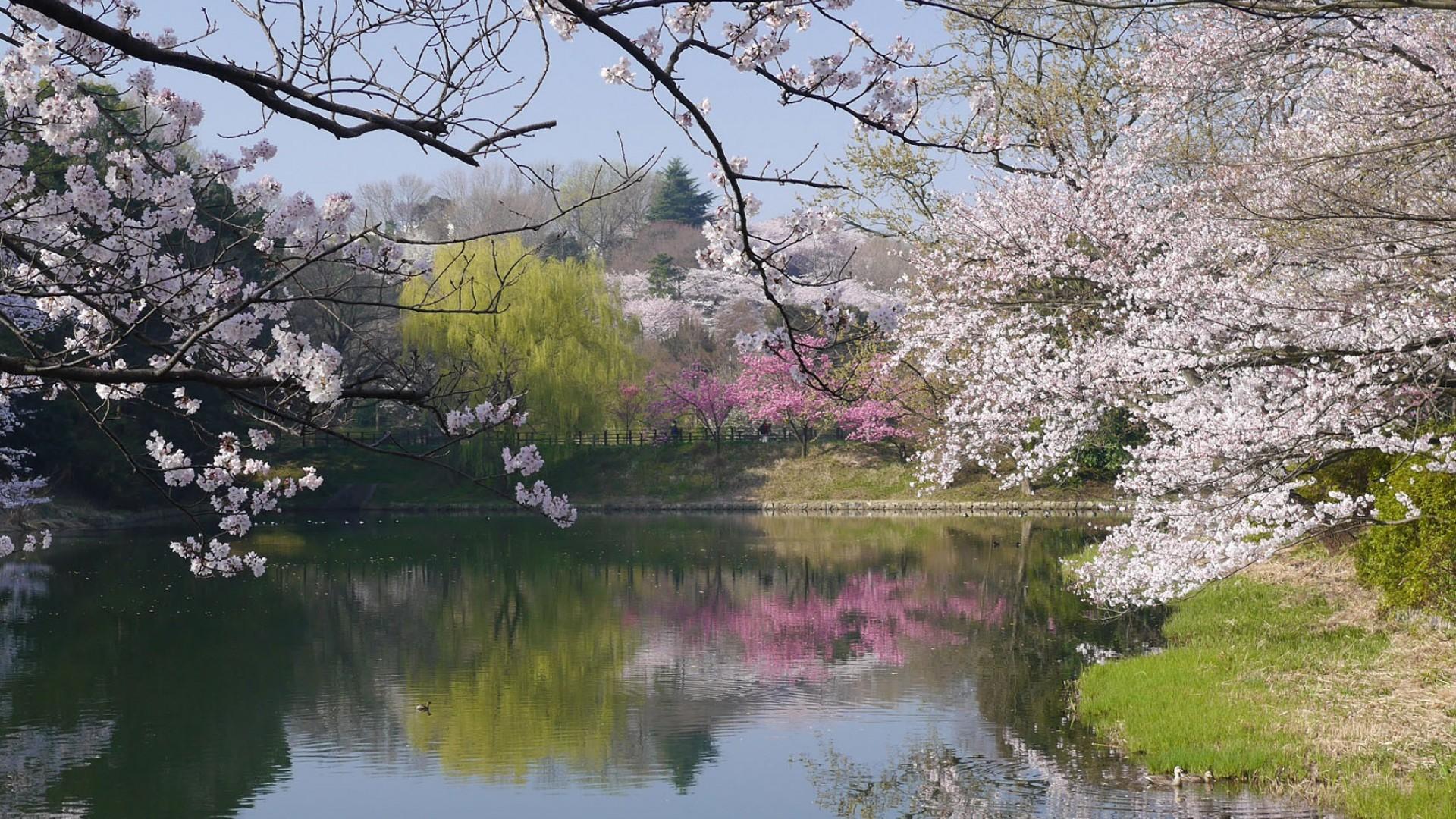 Công viên Mitsuike