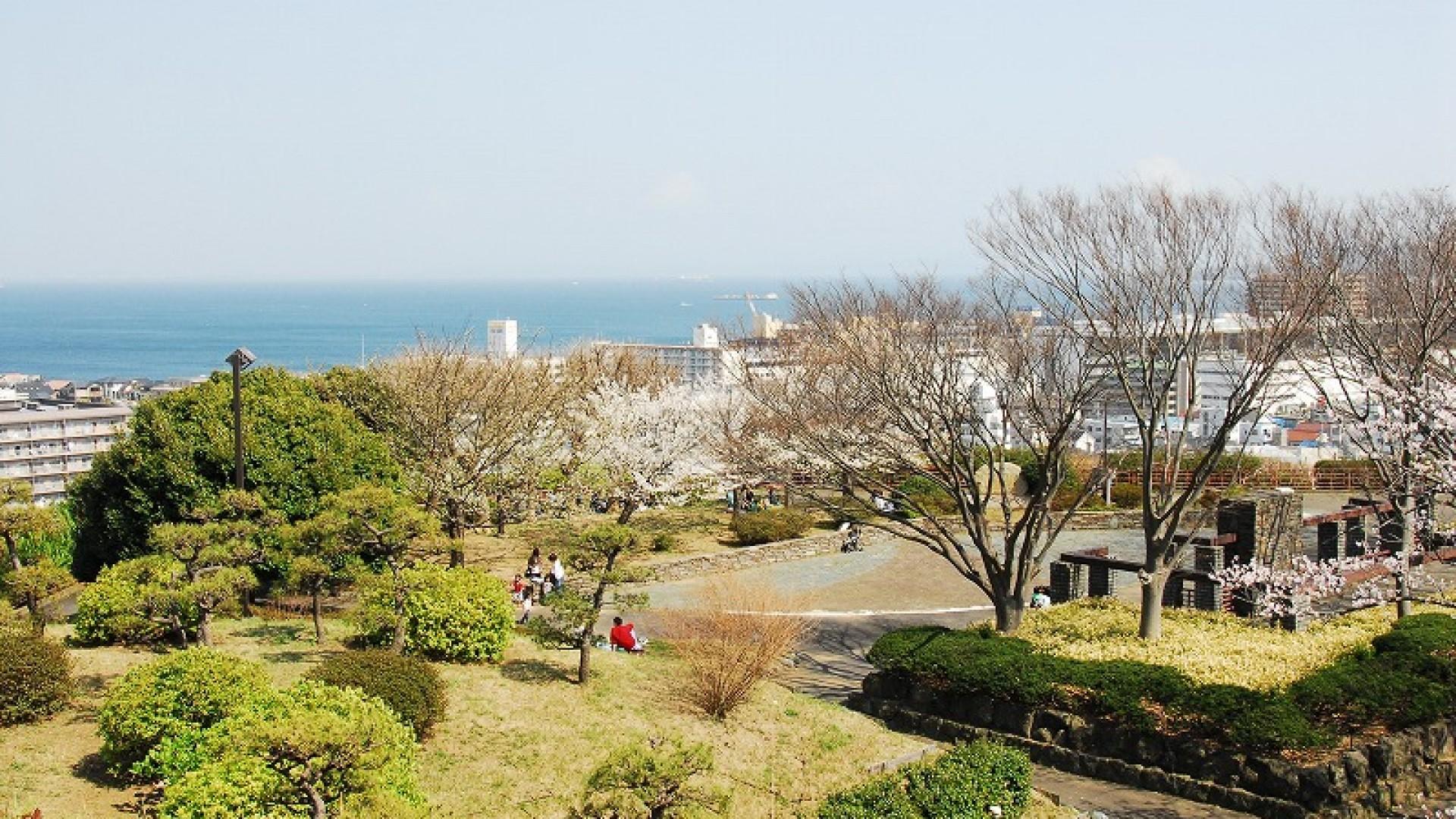 橫須賀中央公園