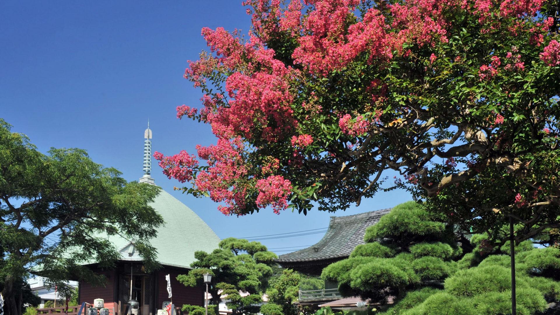 Hongaku-ji Tempel