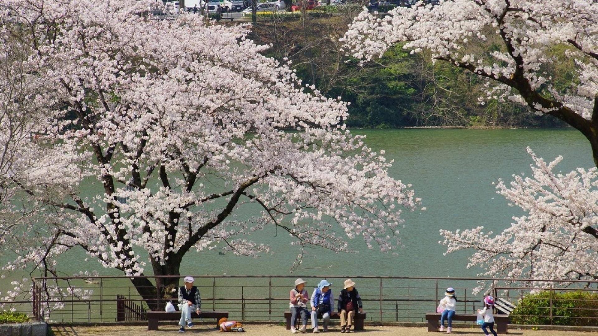 Lac Tsukui