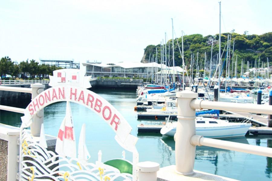 江之島遊艇港