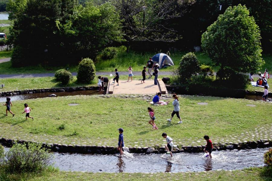 相模川自然の村公園 - 1