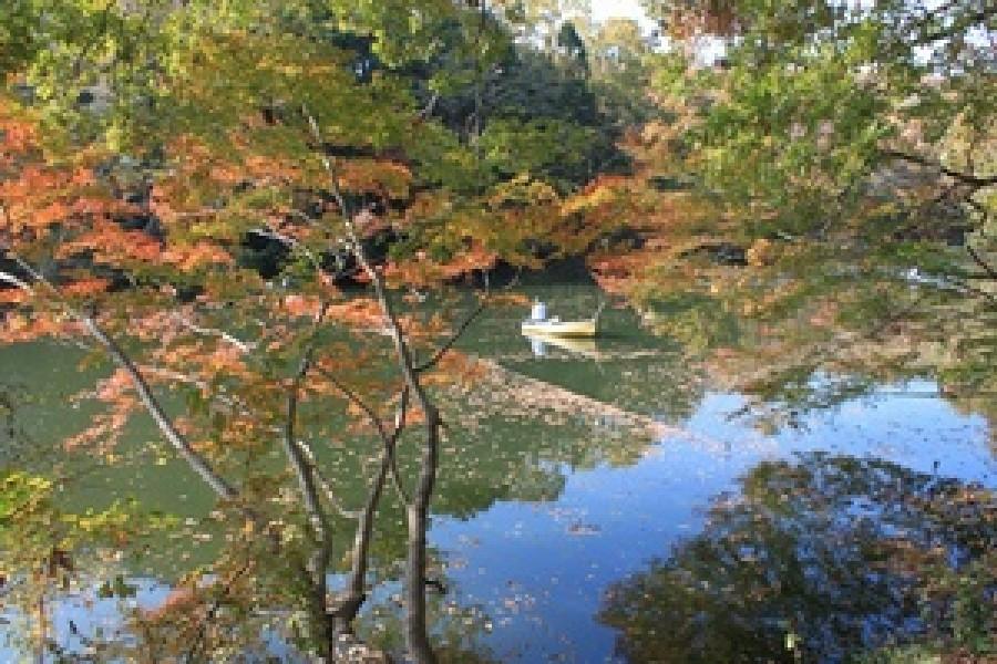 震生湖 - 1