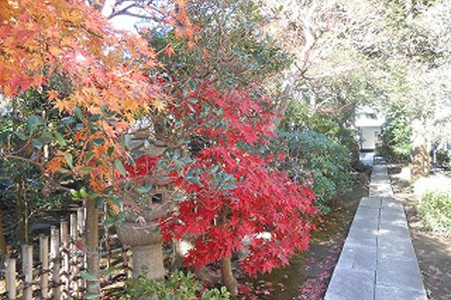 Yoshiya Nobuko Denkmal - 2