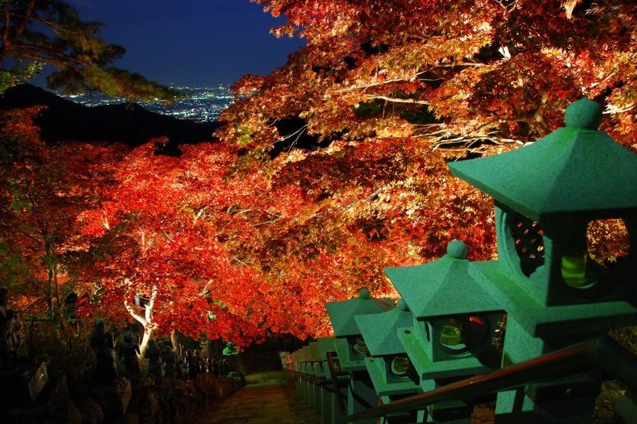 Trình diễn ánh sáng về đêm trên núi Oyama