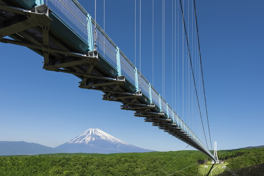 Mishima Skywalk - 2