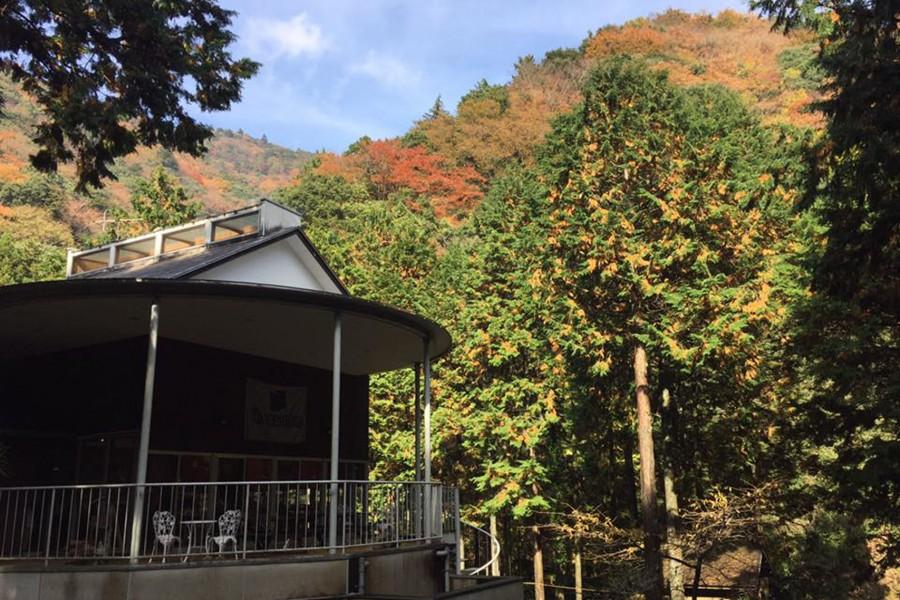 Care House山小屋(溫泉入浴)