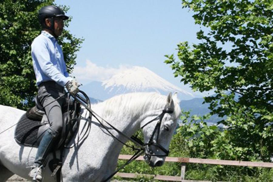 Câu lạc bộ cưỡi ngựa quốc tế Hatano - 1