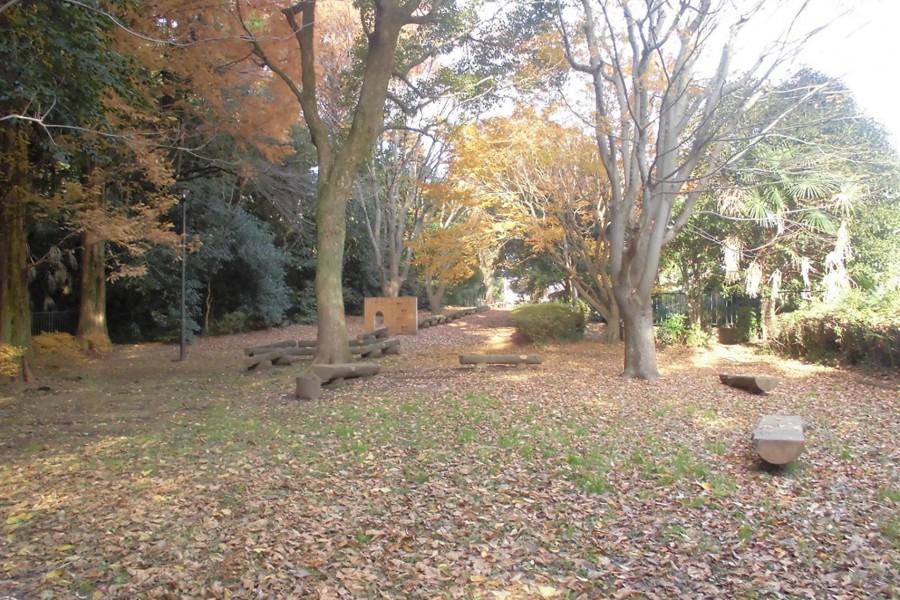 타이마산 공원 - 1