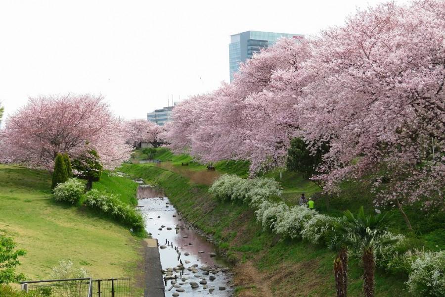 Công viên Sagami Sansen