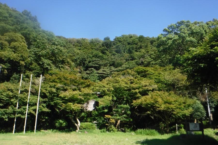 蘆花記念公園 - 2