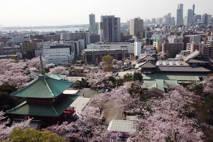Le temple Kodosan Hon-Butsuden