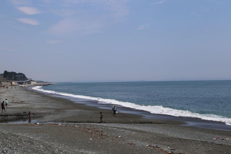 Đánh cá bằng lưới kéo trên bờ biển Umezawa