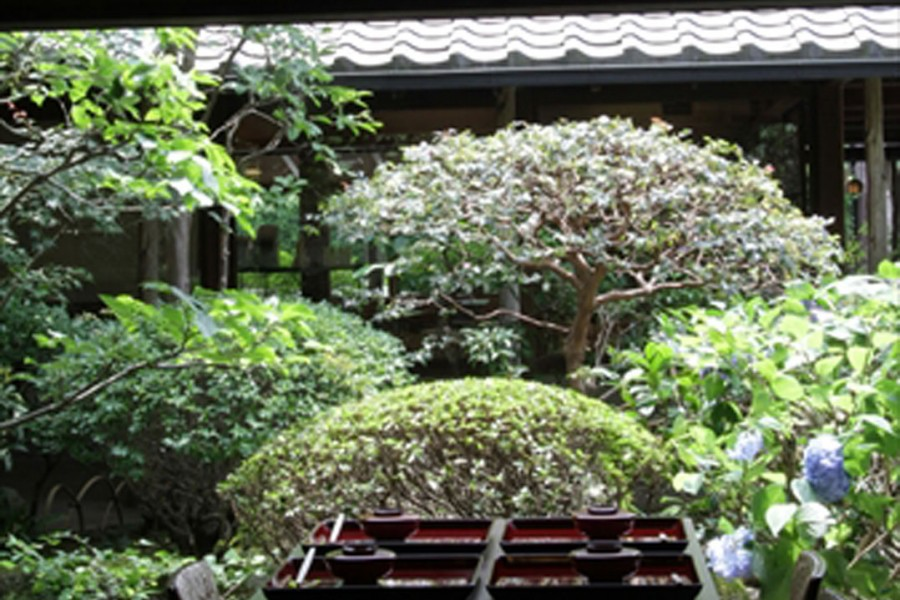 Hachinoki Kamakura Authentic Shojin Ryori - 2