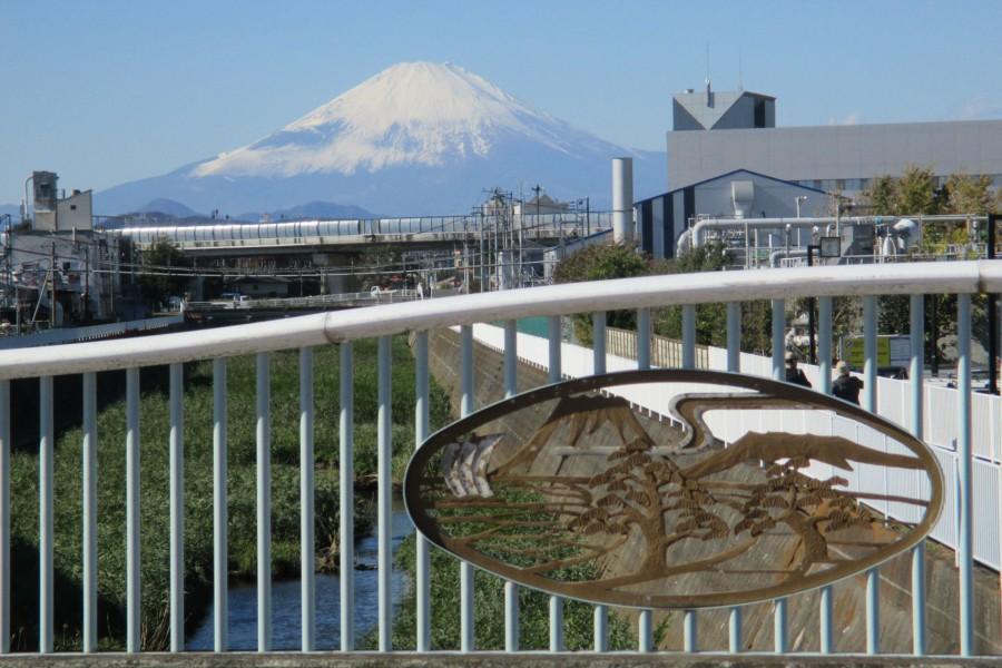 南湖の左富士
