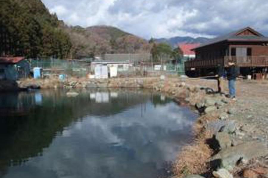 Câu cá hồi tại dòng nước trong ở Yadoriki  - 2