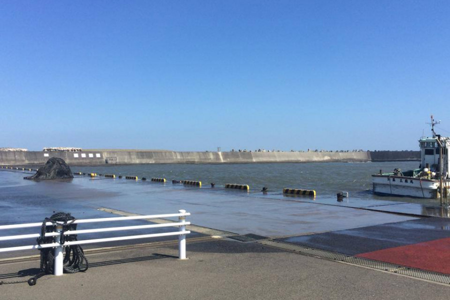Hiratsuka fishing port - 2