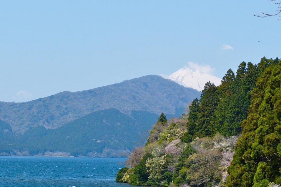 Hakone-Yumoto Walking Tour