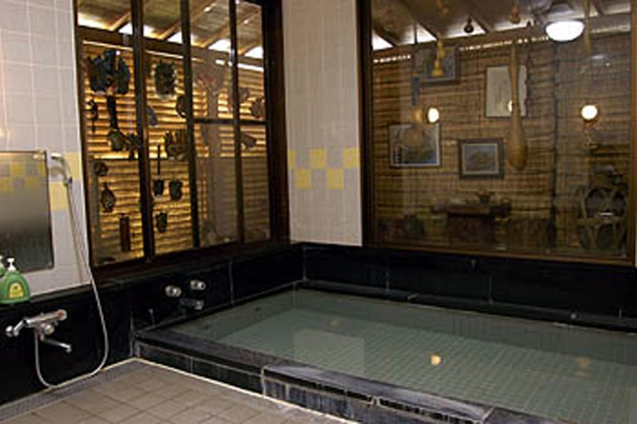 Atsugi Museum Hotel(Tron hot spring)
