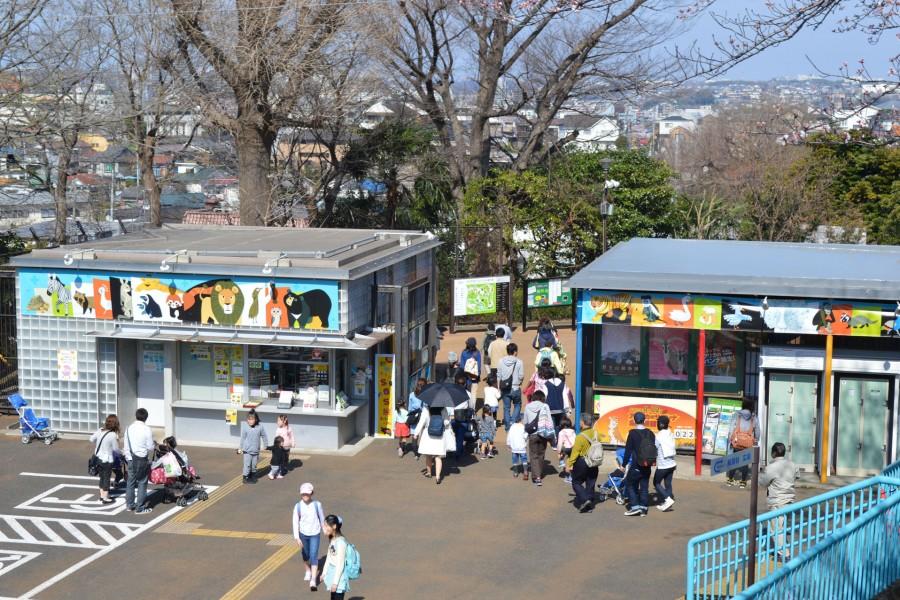 Vườn bách thú Nogeyama - 1