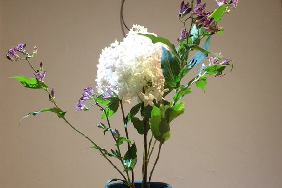 Ohana DE Ohanashi   Japanisches Blumenarrangement   Sogetsu-ryu Ujebana Studio - 1