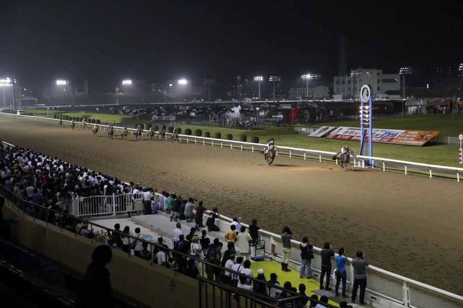 สนามแข่งม้าคาวาสะกิ (ดูการแข่งม้า, ลองขี่ม้า ฯลฯ ) - 1