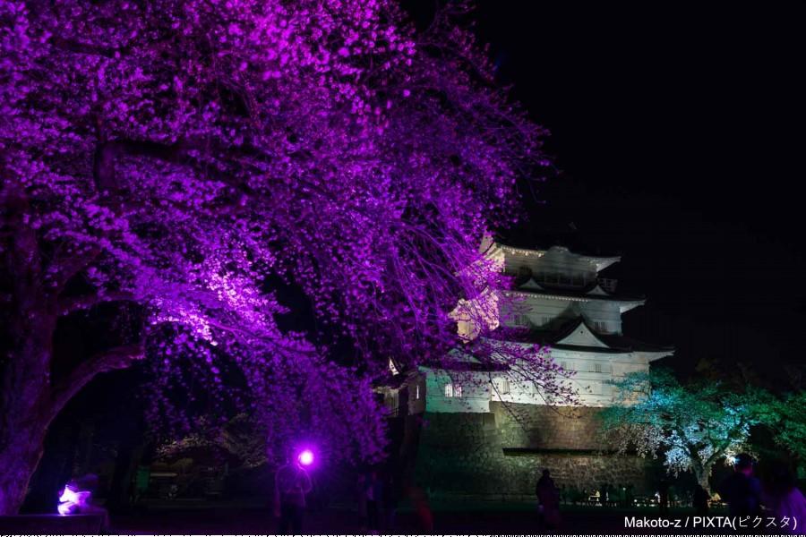 Odawara Castle - 2