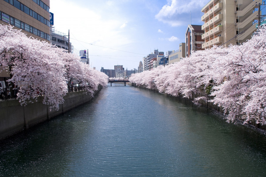 오오카강 산책로