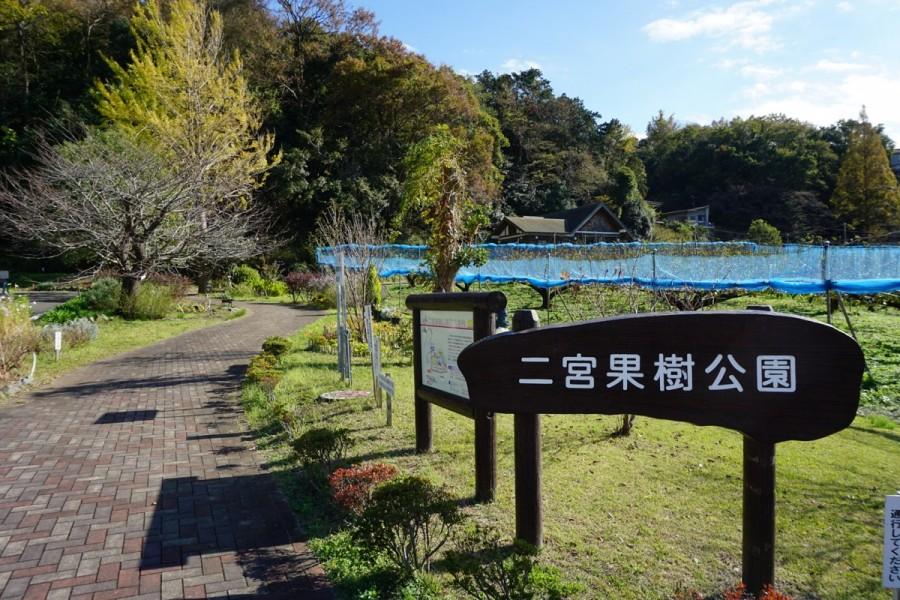 Công viên cây ăn quả Ninomiya