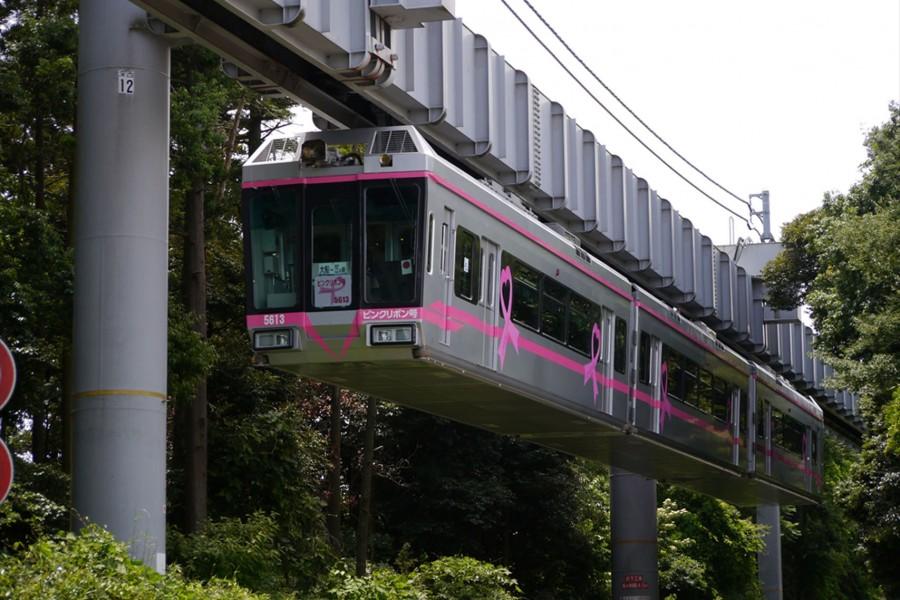 Tàu một ray Shonan Monorail  - 1