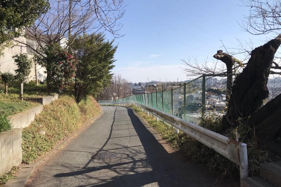 勝坂(麻生区北部地区 富士山が見えるコース) - 2