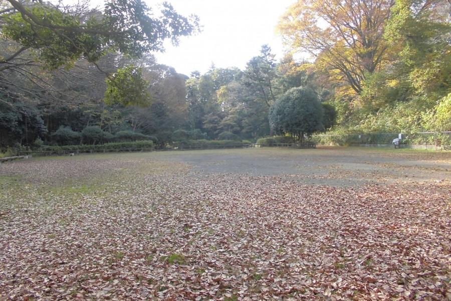 타이마산 공원 - 2