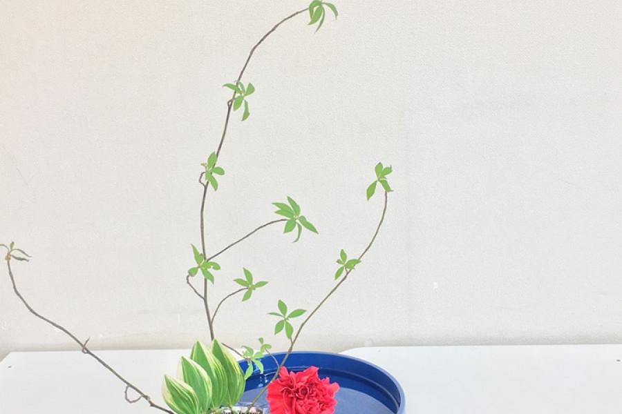 Ohana DE Ohanashi   Japanisches Blumenarrangement   Sogetsu-ryu Ujebana Studio - 2