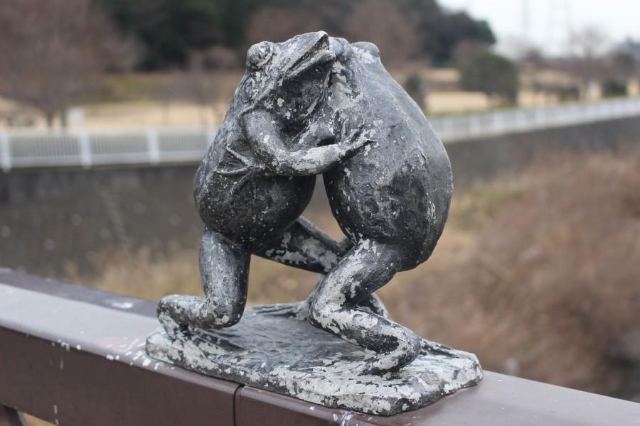 天神橋上的青蛙正在比賽相撲時的動作 - 1