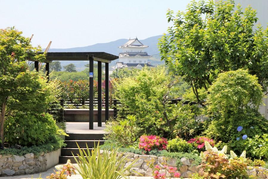 Lusca Odawara (Khu vườn trên mái nhà)