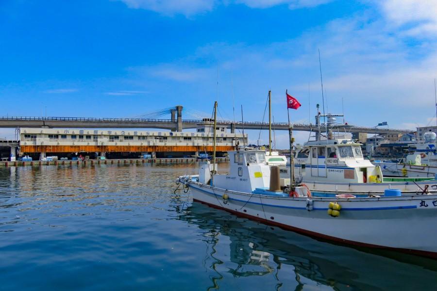 早川漁港 - 1