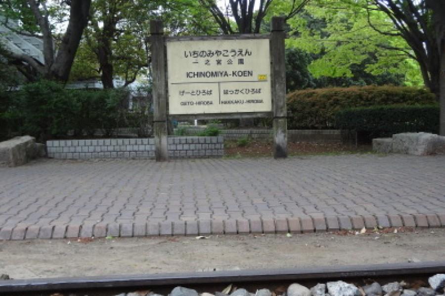 Công viên Ichinomiya - 1