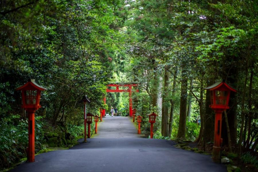 Hakone-jinja Shrine - 3