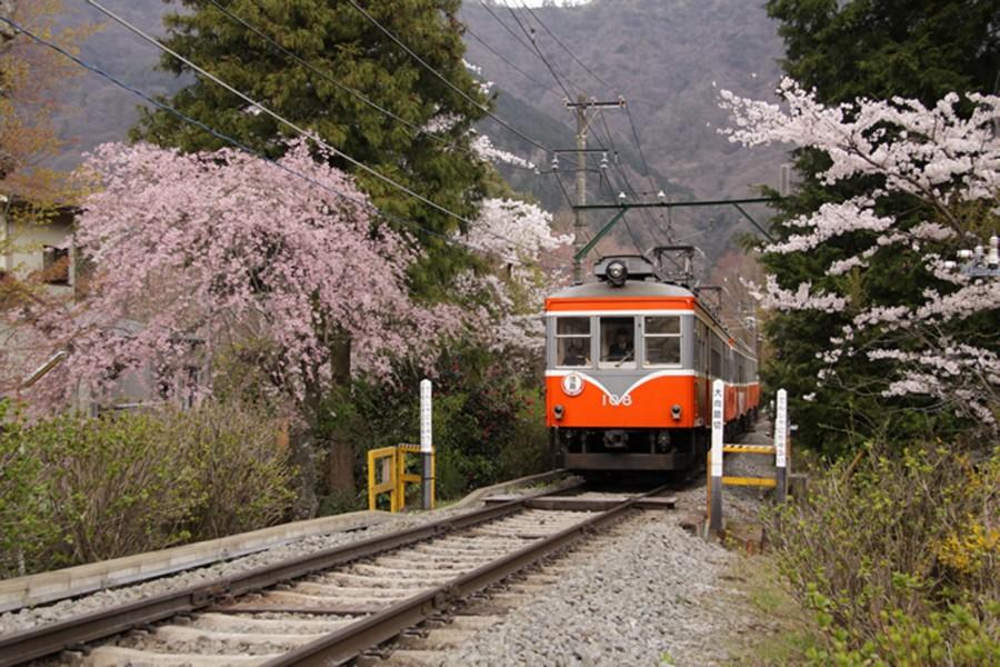 Hakone Tozan Eisenbahn