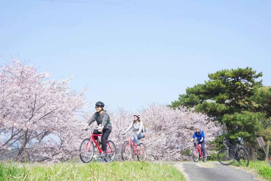 Odawara Cycling Tour - 1