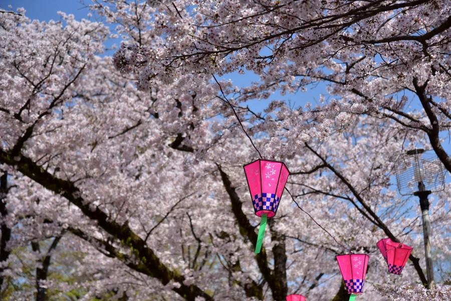 สวนลิยะมะ ฮะคุซาน ชินริน - 3