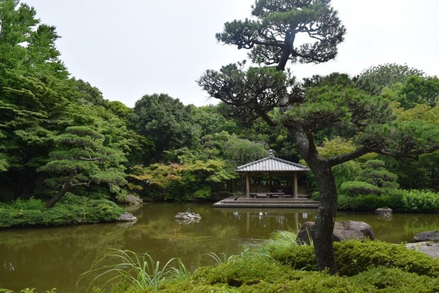 平塚市综合公园 - 2